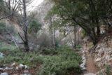 Millard_Falls_16_165_01302016 - Context of Julie and Tahia heading back in Millard Canyon after having had their fill of the Millard Falls in January 2016