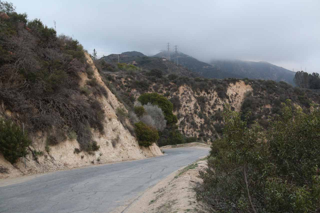 The Chaney Trail Road was a pretty narrow paved road going from the residential neighborhoods of Altadena to the Forest Service area