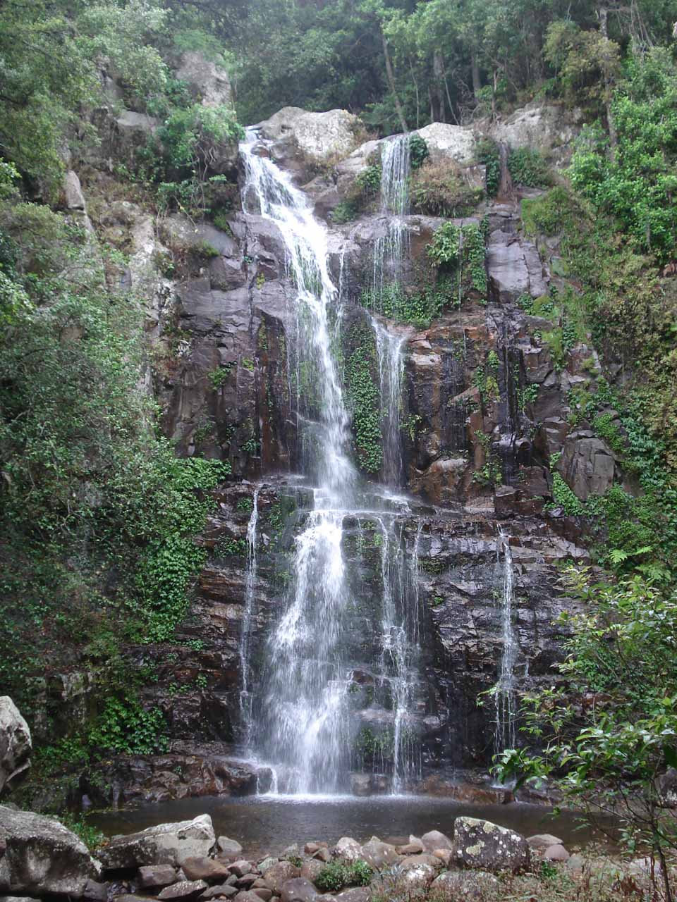 Closer look at the Upper Minnamurra Falls