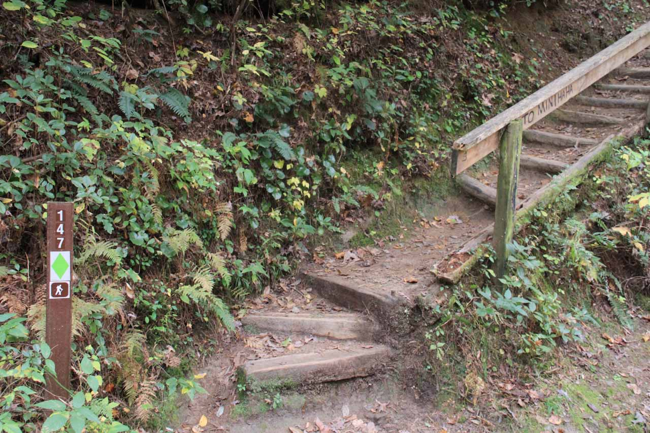 The steps at the trailhead