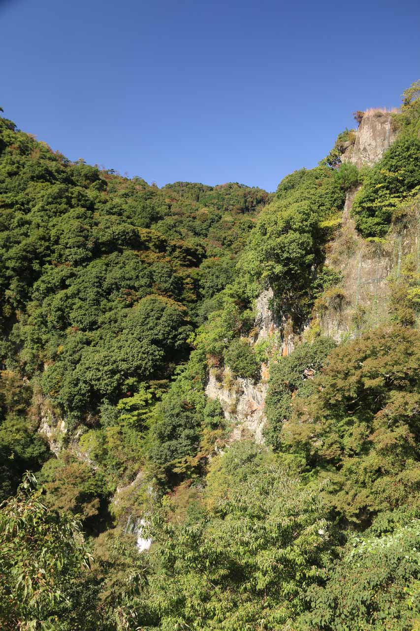 Just past the tunnel, we got this very obstructed view of the Minoh Waterfall and the surrounding bush-clad cliffs