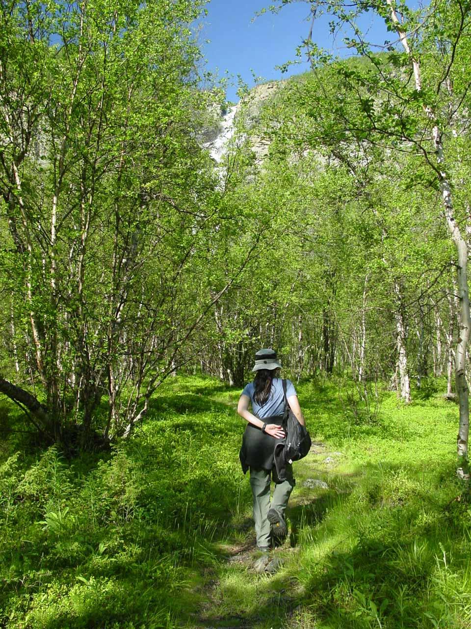 Julie starting the walk to Mollisfossen