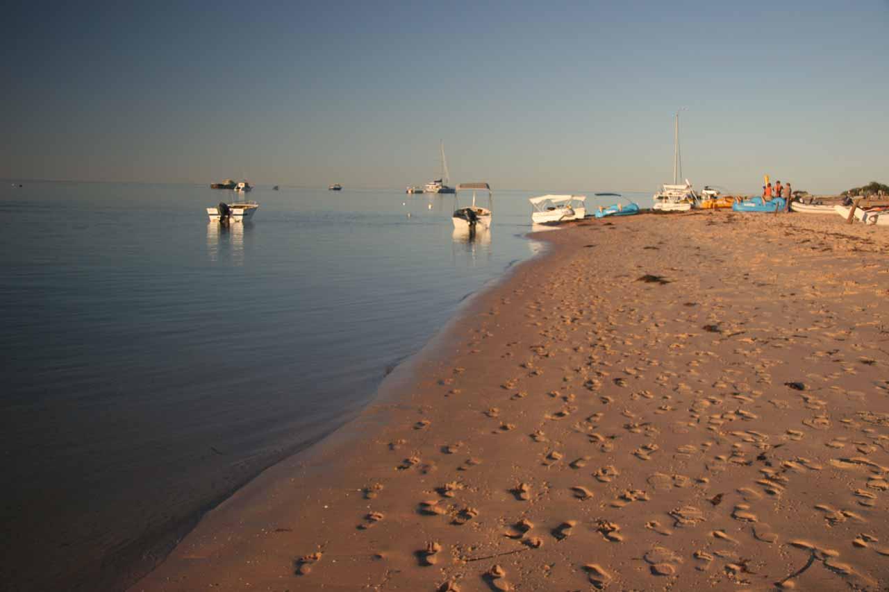 The beach at Monkey Mia