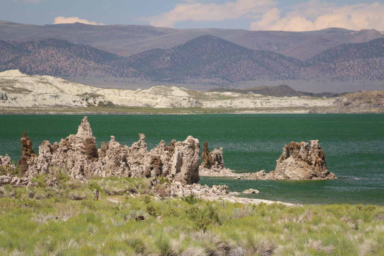 Looking towards the green expanse of Mono Lake