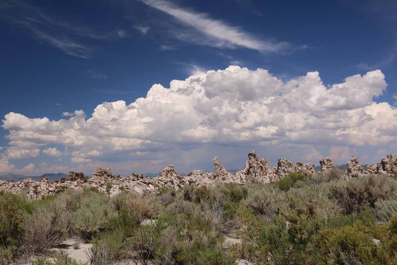 Looking eastwards towards puffy thunderclouds looming above the tufas of the South Tufa Reserve