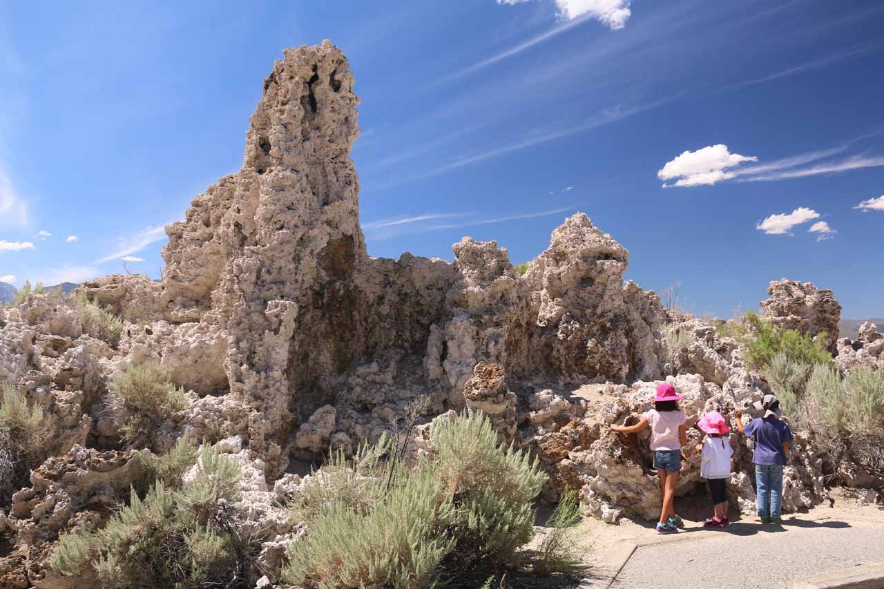 The kids getting a closer look at the rough texture of the tufas in the South Tufa Reserve