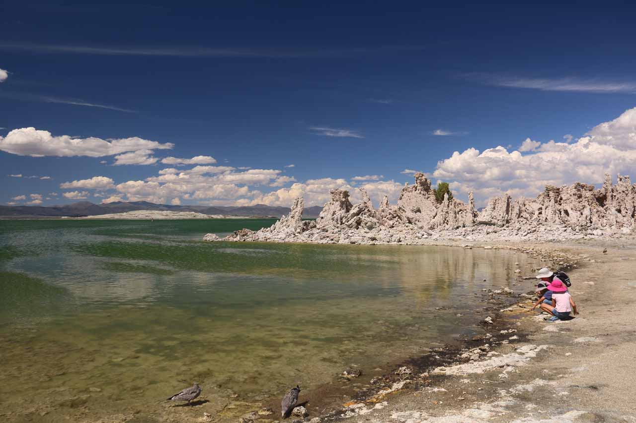 Tahia and Hannah playing alongside the southern shores of Mono Lake