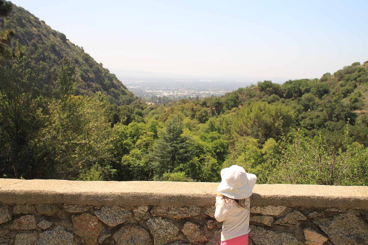 Tahia checking out the view of the Los Angeles Basin from Monrovia Canyon Park