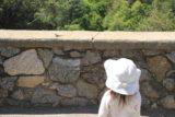Monrovia_Canyon_14_020_04202014 - Context of Tahia and the lizard