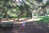 Monrovia_Canyon_14_034_04202014 - Tahia going through the picnic area by the upper parking area of Monrovia Canyon Park in April 2014