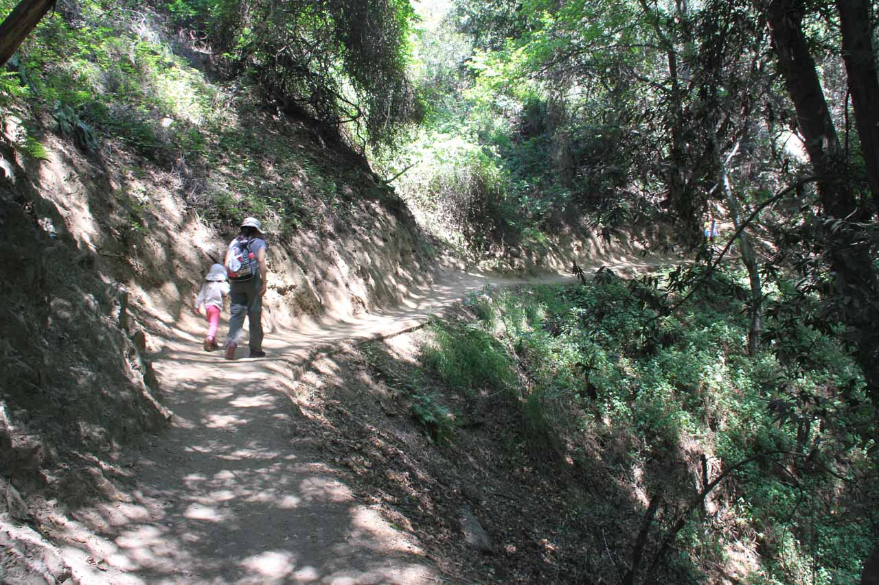 The hike was gently uphill for most of the way up to Monrovia Canyon Falls, but there were plenty of narrow stretches where we did have to mind the dropoffs