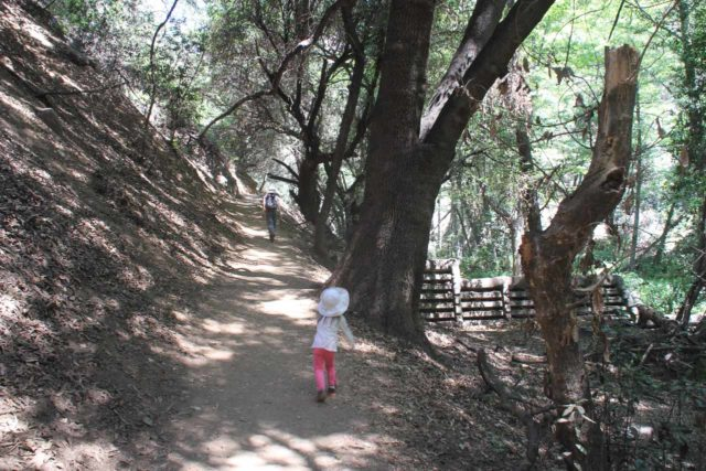 Monrovia_Canyon_14_047_04202014 - Our daughter insisting on hiking the narrow parts of the Monrovia Canyon Falls Trail by herself