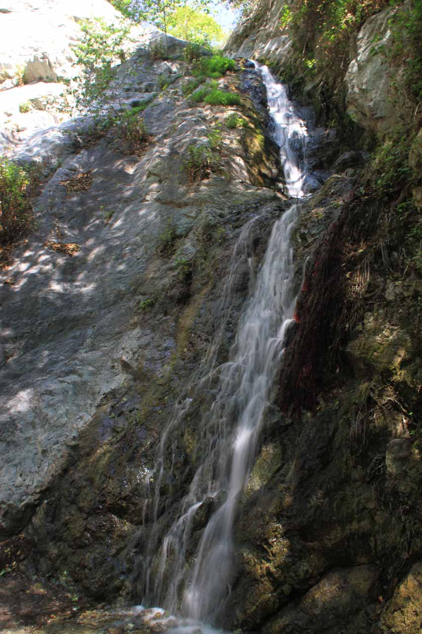 Looking up at Monrovia Canyon Falls from near its base