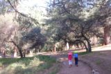 Monrovia_Canyon_15_029_07262015 - Tahia and Joshua leading the way through the picnic area at Monrovia Canyon Park