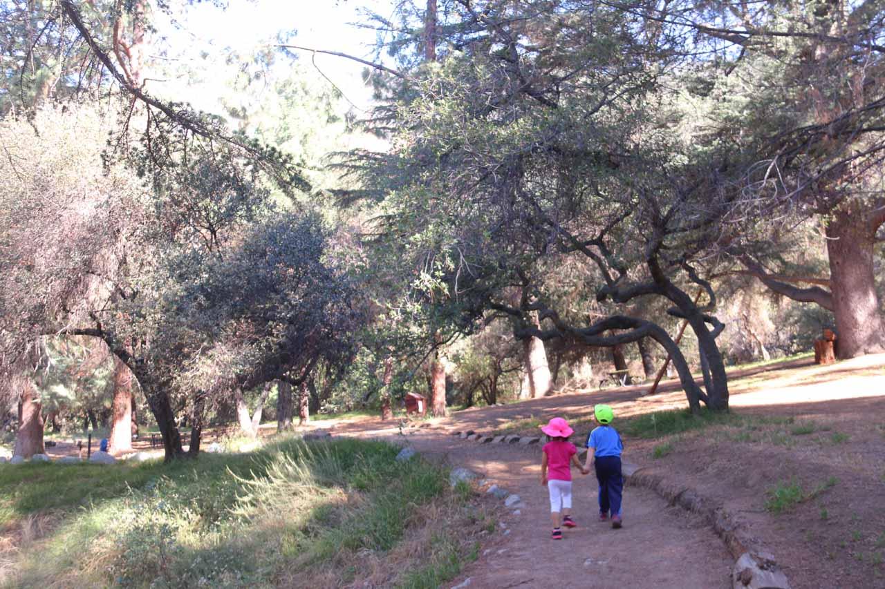 Tahia and Joshua leading the way through the picnic area at Monrovia Canyon Park