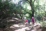Monrovia_Canyon_15_036_07262015 - Letting Tahia and Joshua walk on their own in this open part of the trail