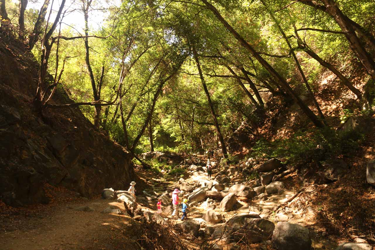 Descending the trail as we left Monrovia Canyon Falls