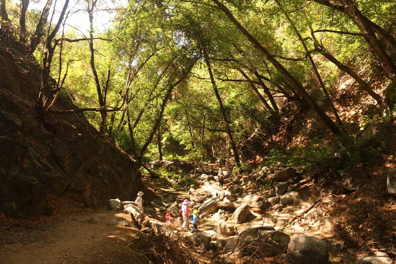 Descending the trail as we left Monrovia Canyon Falls