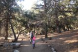 Monrovia_Canyon_Falls_006_11132016 - Mom and Tahia passing through a fairly quiet picnic area on our way to the Monrovia Canyon Falls in November 2016