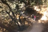 Monrovia_Canyon_Falls_007_11132016 - Julie and Tahia on the initial narrow trail descending to the main trail from the picnic area as seen during our visit in November 2016