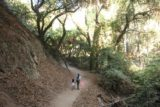 Monrovia_Canyon_Falls_015_11132016 - Julie and Tahia on a wider and more forested section of the Monrovia Canyon Falls Trail in November 2016