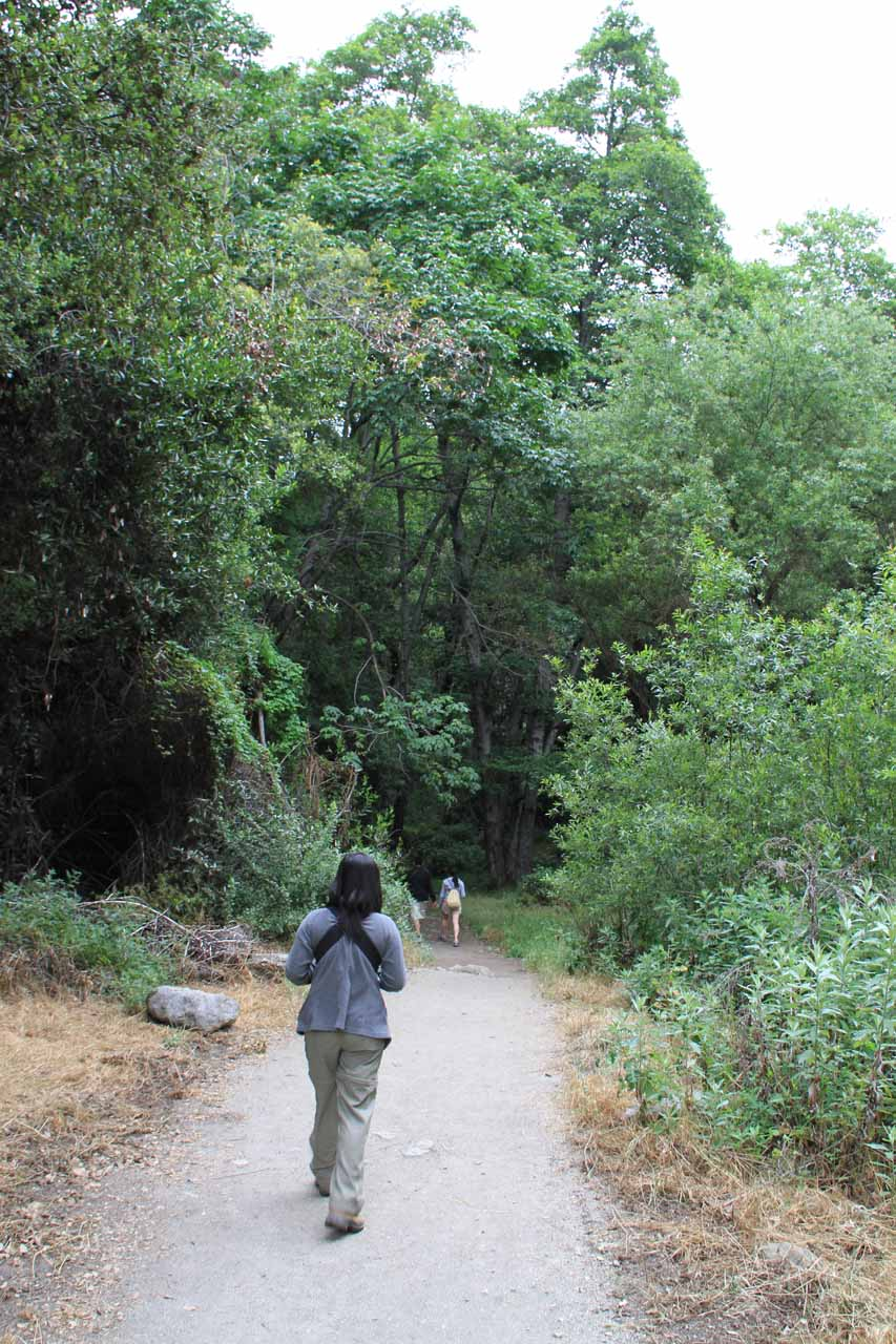 Still on the trail
