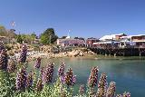 Monterey_037_04242019