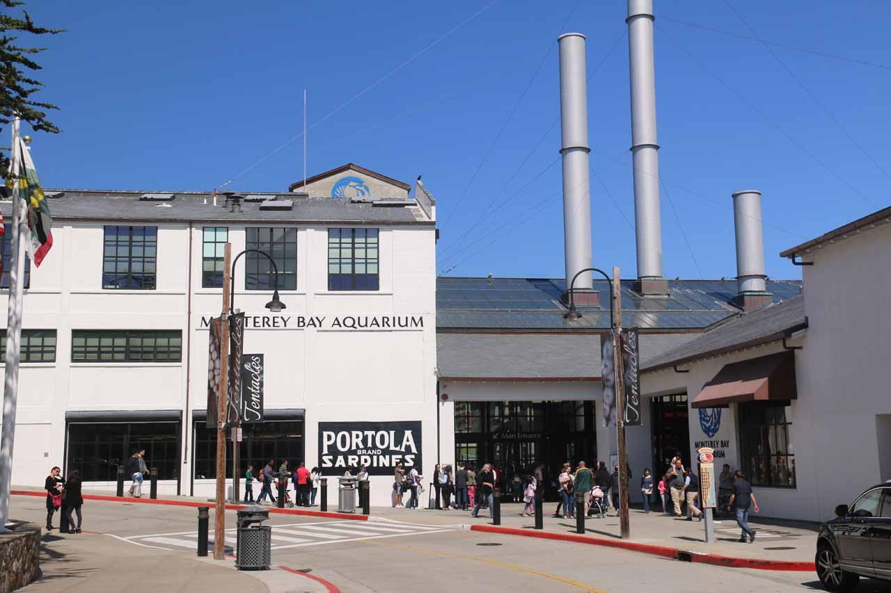 Looking back at the Monterey Aquarium