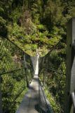 Montezuma_Falls_013_11272006 - Looking across the suspension bridge fronting the Montezuma Falls during our late November 2006 visit