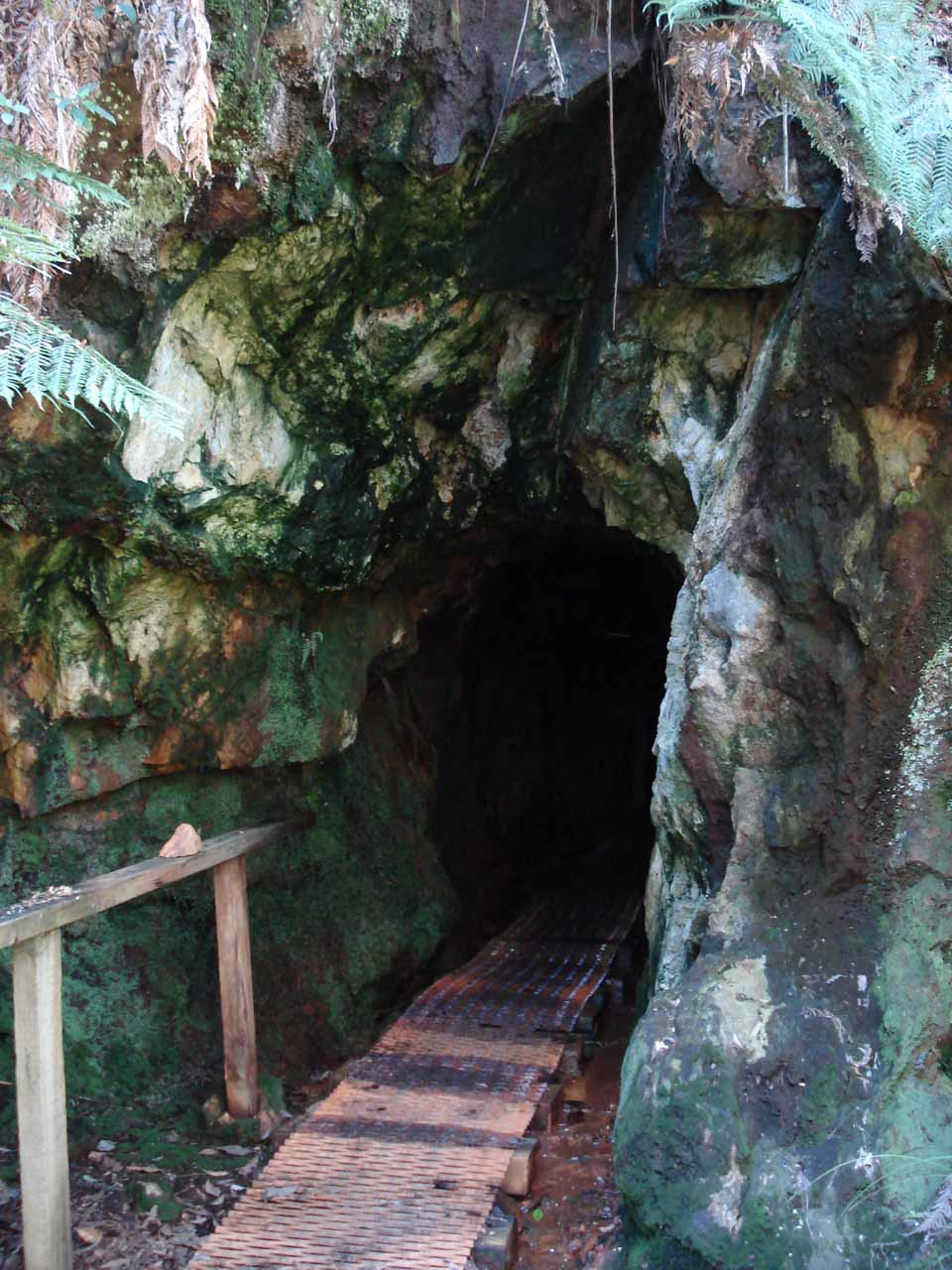 Some abandoned mine besides the trail