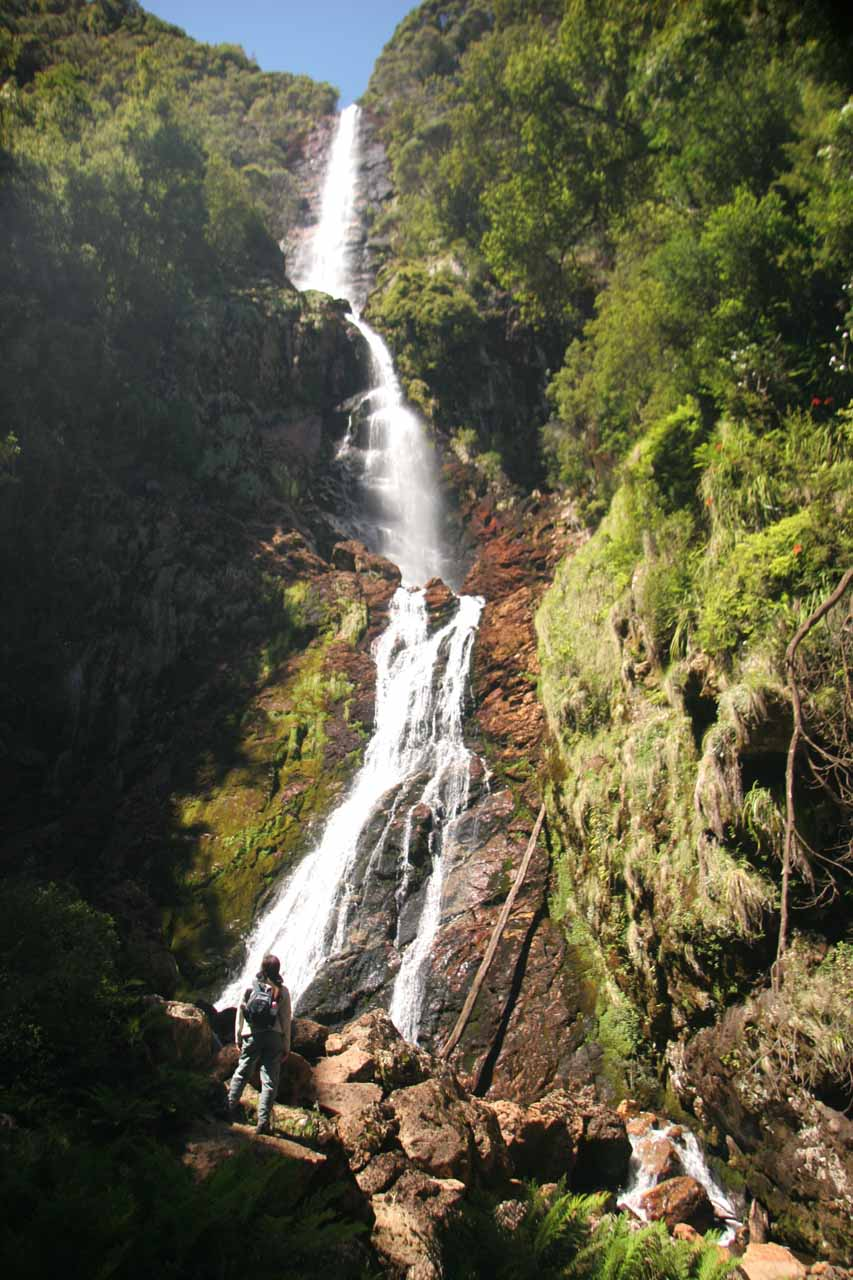 On our first visit back in late November 2006, we were joined by another bushwalker who caught up to us and wanted to get a closer look at Montezuma Falls