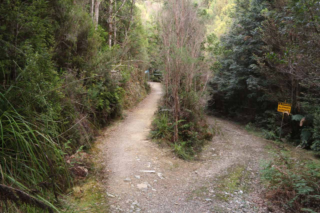 The walking track continued to the left of this fork near the trailhead, but the path on the right was actually so 4wd vehicles could descend to Baker Creek and cross it