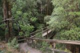 Montezuma_Falls_17_012_11292017 - A footbridge over over part of Dundas Creek on the beginning of the Montezuma Falls Track