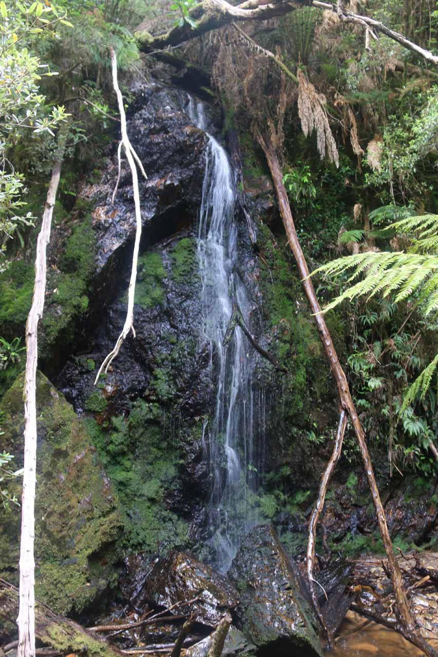 This was a side waterfall that caught my attention somewhere between the walkers only sign and the abandoned mine shaft
