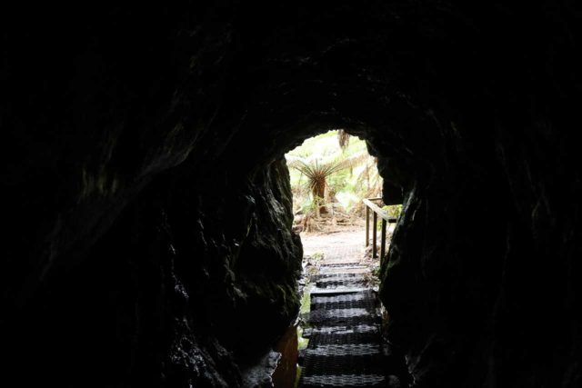 Montezuma_Falls_17_207_11292017 - Looking out of the mine shaft by the Montezuma Falls Track