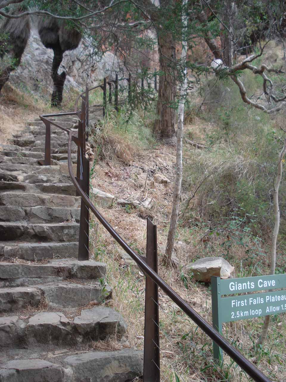 Looking up the steps to the Giants Cave and the First Falls Plateau