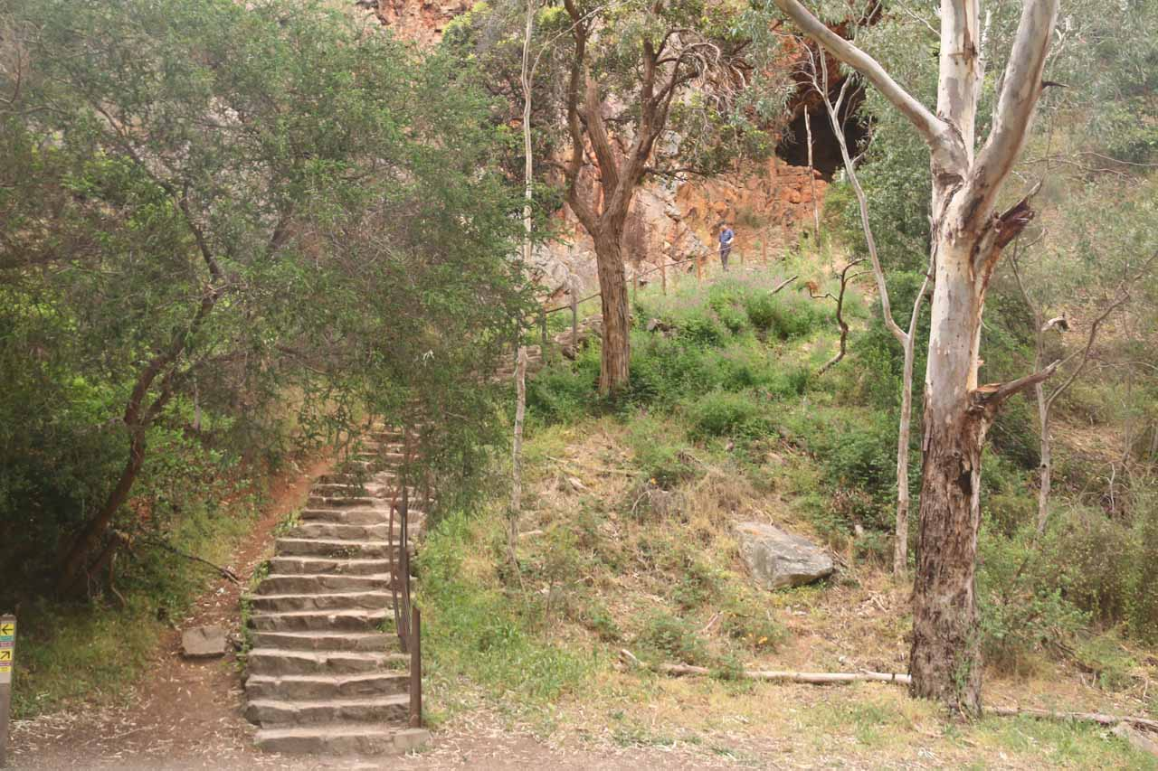 Around the half-way point of the Morialta Valley Walk, we encountered this detour leading up to the Giant's Cave