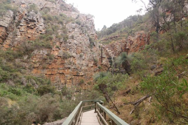 Morialta_Falls_037_11102017 - Approaching the Morialta Falls as the valley walls closed in