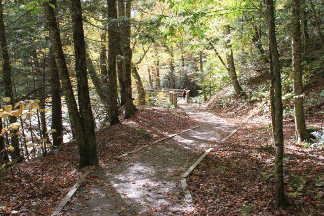 Moss_Glen_Falls_Granville_011_09302013 - The short walk leading to the lookout for Moss Glen Falls