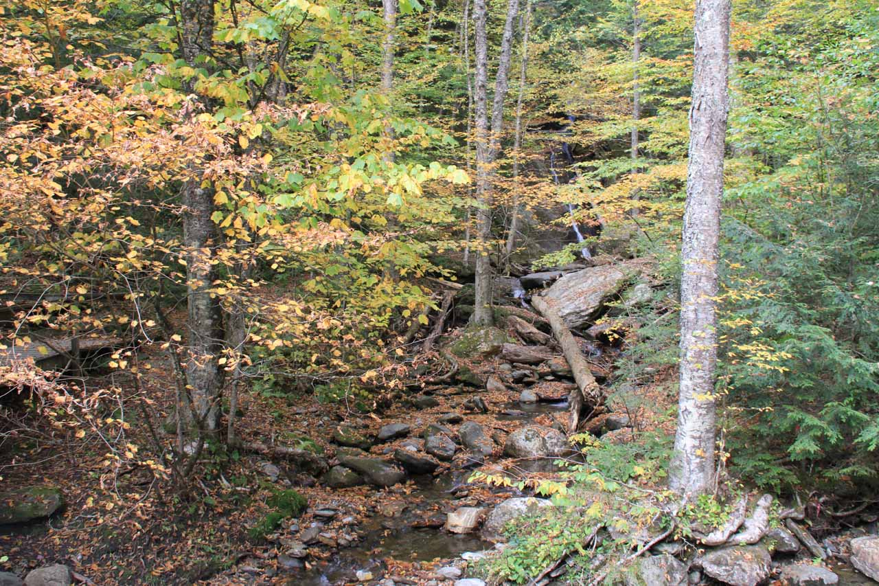 Buried deep upstream from this small brook was the other hidden waterfall that we could hear but barely see