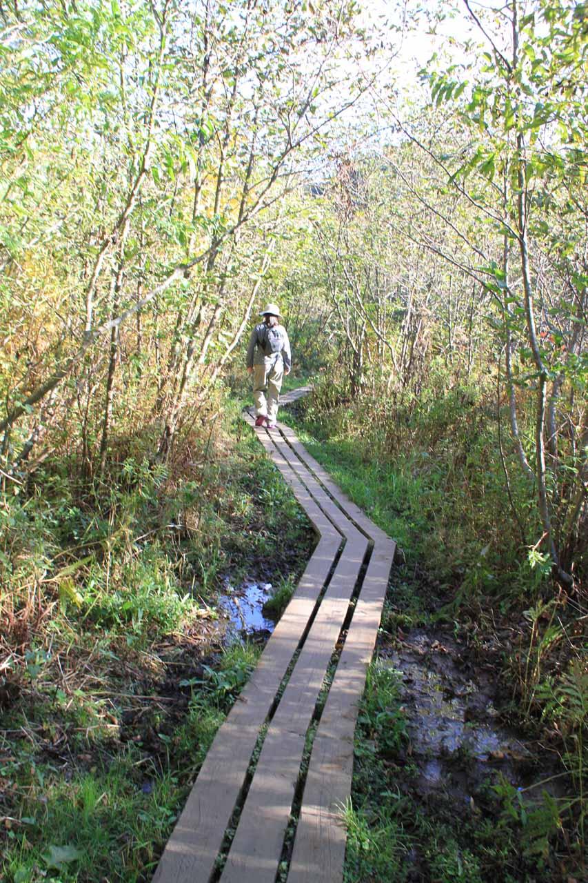 This boardwalk was helpful when the trail got swampy