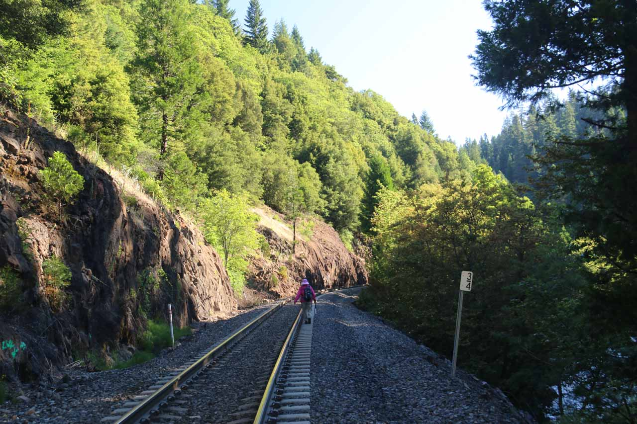 This was another fairly narrow section of the railroad tracks where the dropoffs on the right steeply banked right into the Sacramento River