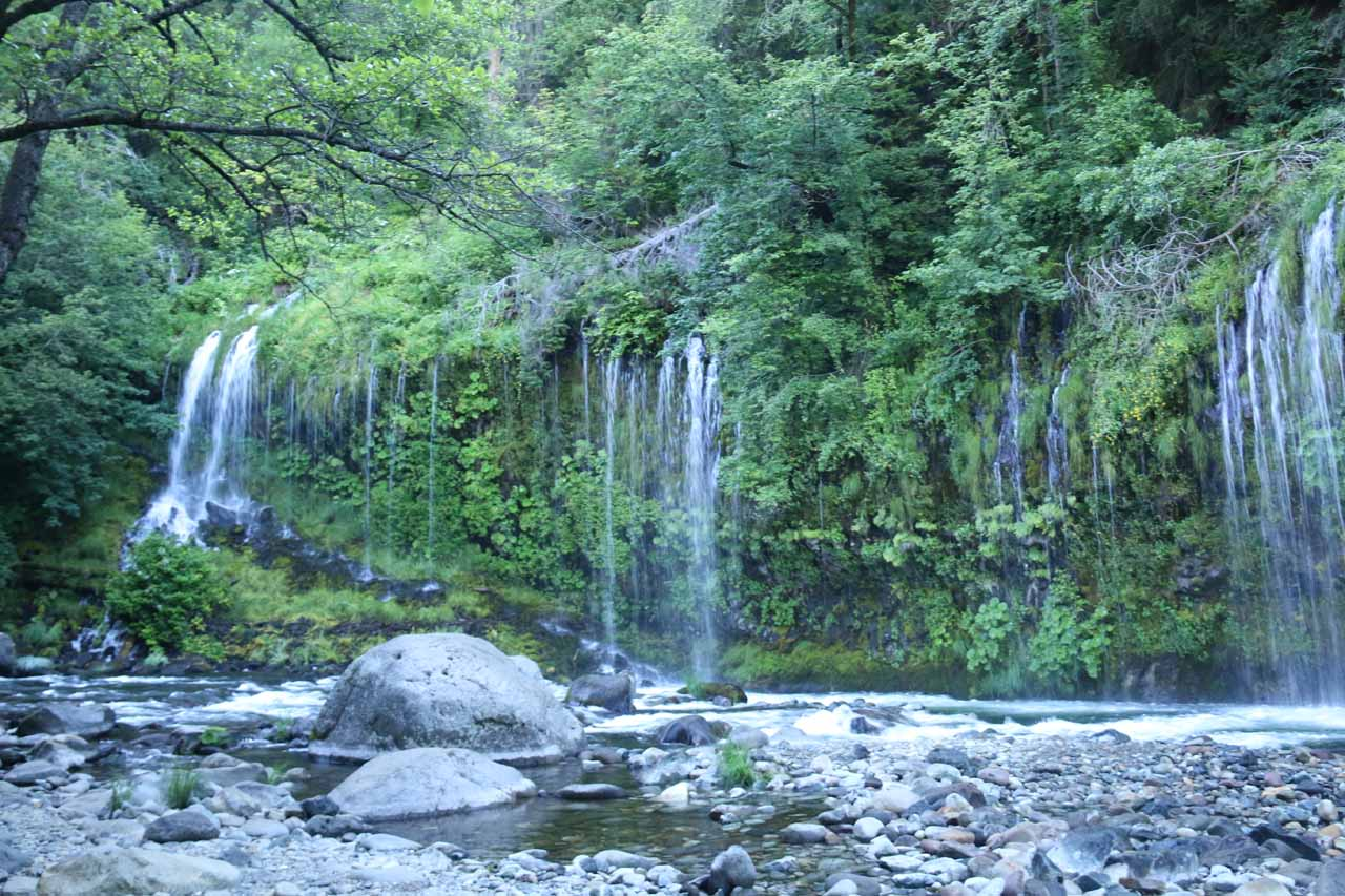 This was the far left side of Mossbrae Falls, which was a bit more spaced out