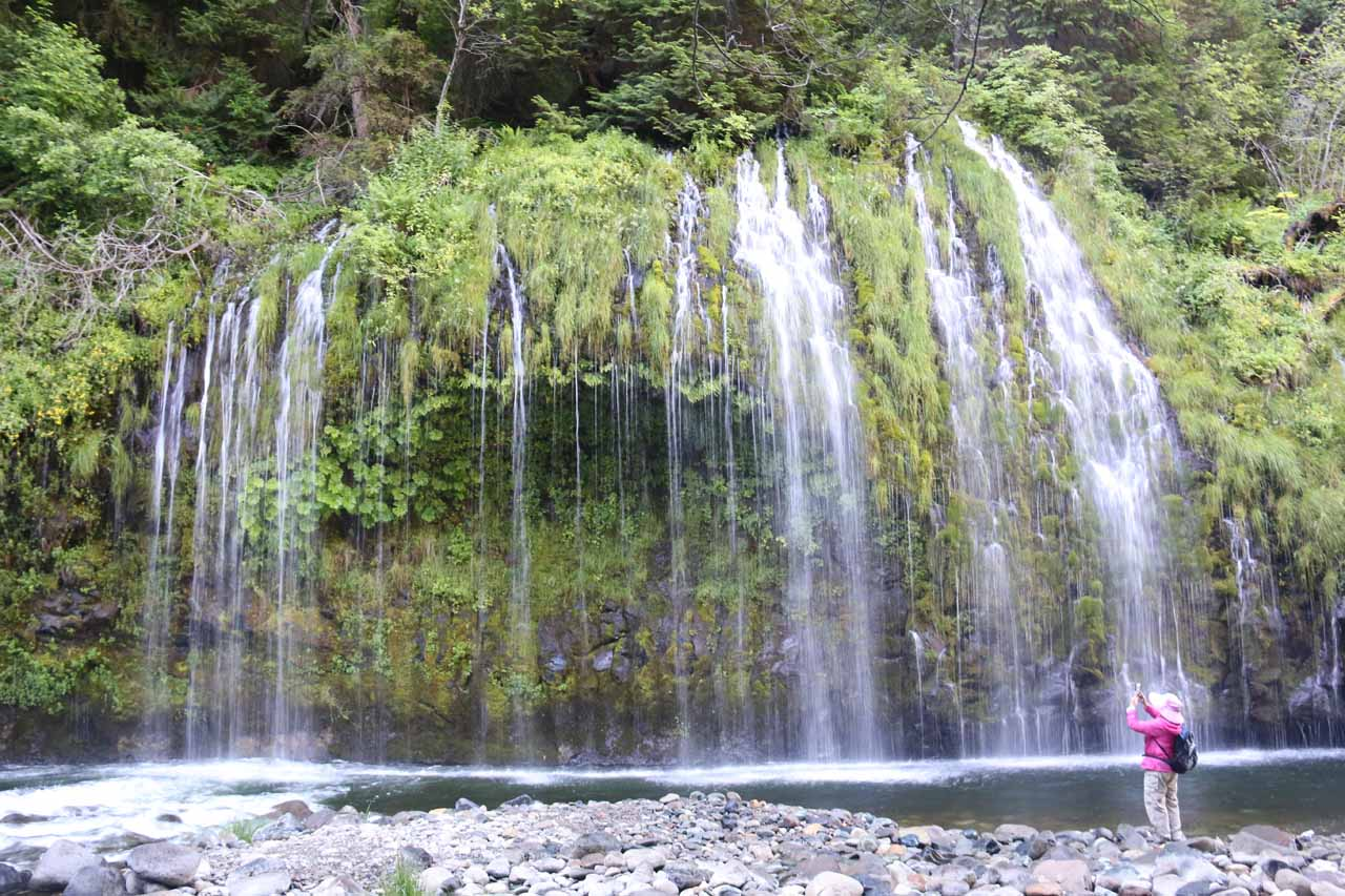 If the proposed Mossbrae Falls access from Hedge Creek Falls Trail is complete, then Hedge Creek Falls would merely be the opening act before reaching the now-verboten Mossbrae Falls