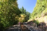 Mossbrae_Falls_151_06192016 - Mom navigating a particularly narrow section of the curving railroad tracks on the way back from Mossbrae Falls