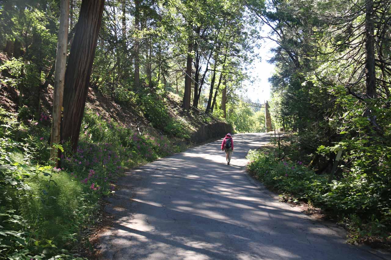 Hiking back up Scarlet Way towards Dunsmuir Ave