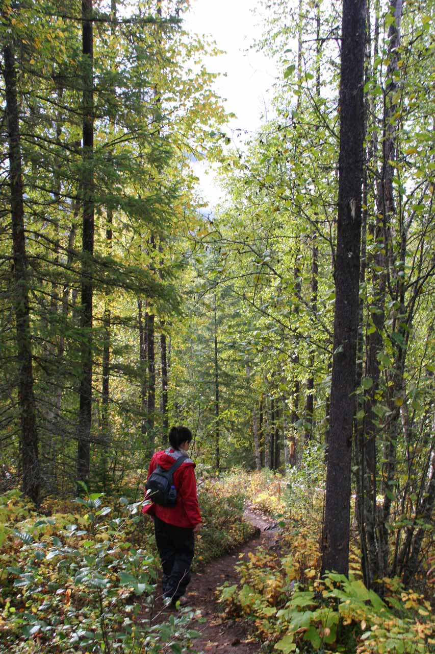 Julie continuing the descent amidst the forested landscape