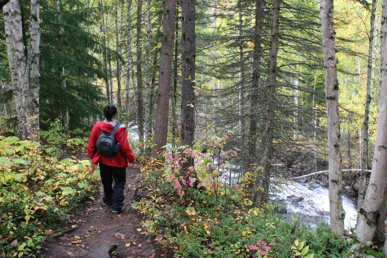 The trail continuing to skirt alongside Moul Creek
