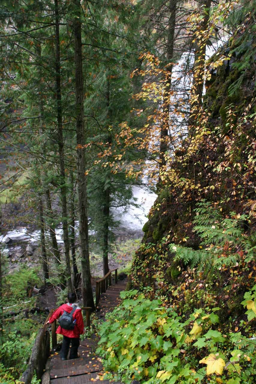 Julie descending towards the base of Moul Falls