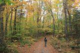Moxie_Falls_006_10042013 - On the trail for Moxie Falls